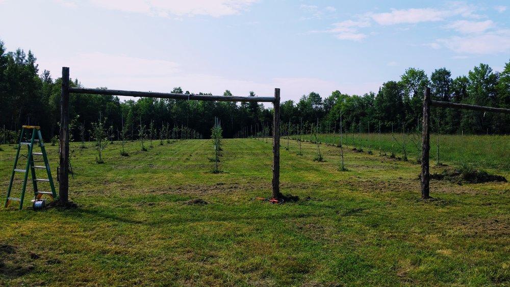 s&i farm.jpg