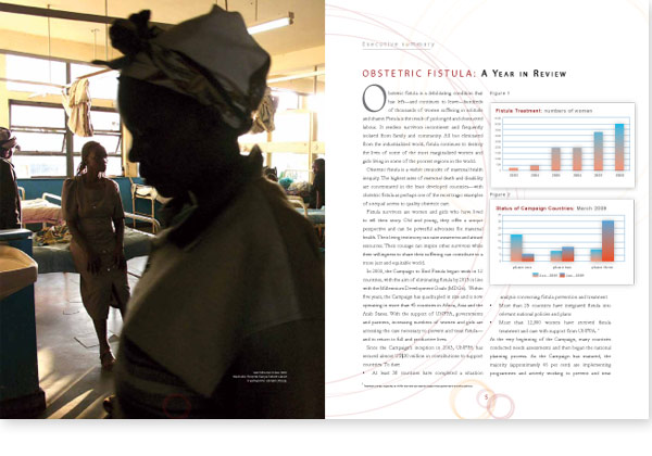 Campaign to end fistula, annual report 2008,