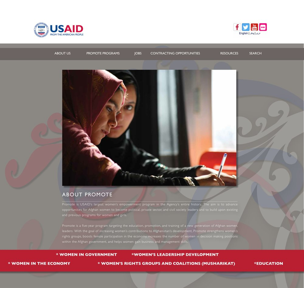 USAID Promote 2016 Website