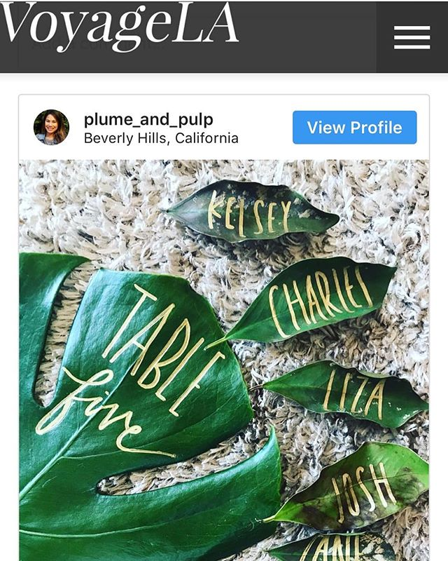 How awesome! VoyageLA featured one of my posts along with many other cool individuals on their Post about LA Creatives. 😍 ⠀ VoyageLA.com ⠀ .⠀ .⠀ .⠀ Plumeandpulp.com⠀ #practicemakesprogress #handmade #handwritten #handlettered #handmadefont #dailytype #goodtype #brushcalligraphy #typeinspired #calligraphy #calligraphymasters #handletteringdaily #handletteringpractice #illustrations #letteringcommunity #craftqueen👑 #losangelesartist #craftaholic #handcraftedinlosangeles #handletteringdaily #letteringtribe #handcraftedcards #plumeandpulp #losangelescalligrapher #monstera⠀ ⠀