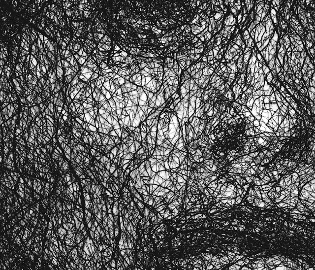"Cropped detail of intaglio print, ""Tracings"", Amanda Clyne"