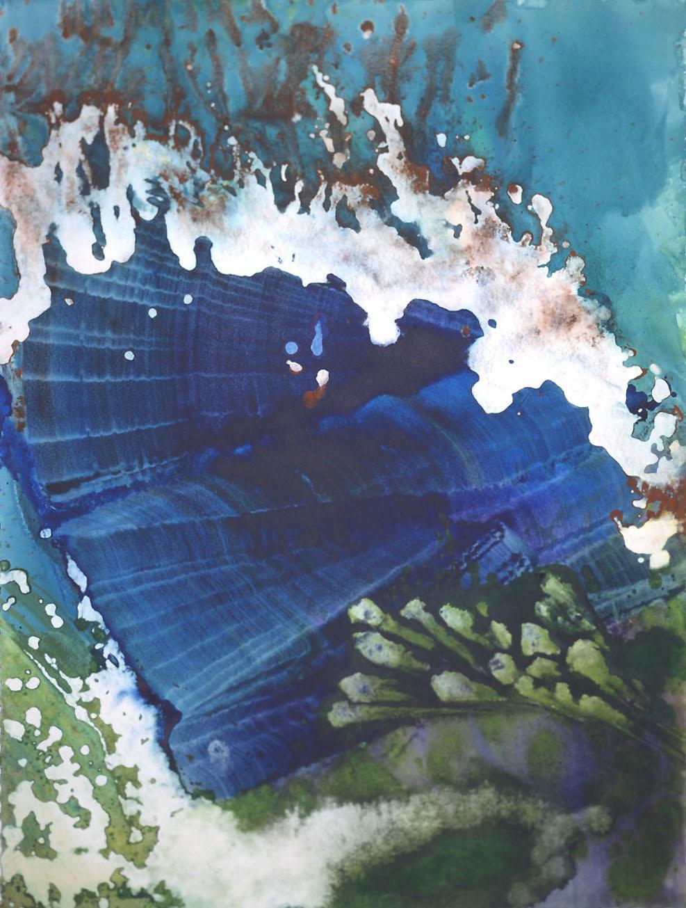 Crystal Reef Series