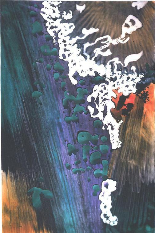"""Emerald Forest II"", Rainforest Series."