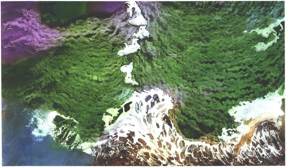 """""""Deep Sea Moss"""" 1987, Forest Moss Series, acrylic on paper, 42 x 72 inches (107 x 254 cm)."""
