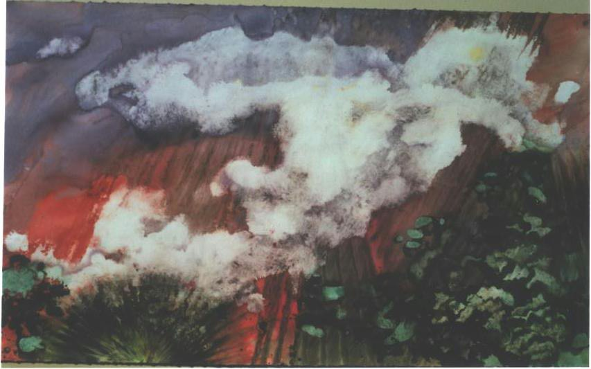 """""""Early Forest Fire"""", Forest Fire Series."""