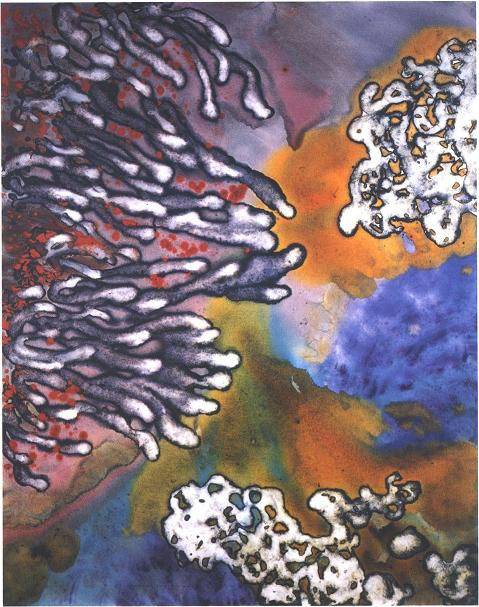 """""""Amber Glow Cave Garden II"""" 1994, Cave Garden Series, acrylic on canvas, 60 x 48 inches (152 x 122 cm)."""