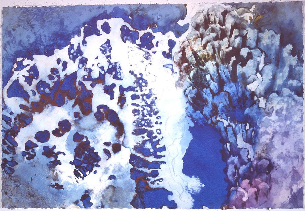 """""""Deep Sea Garden"""", 1993, Deep Sea Garden Series, acrylic on paper, 28 x 38 in (71 x 91 cm)."""
