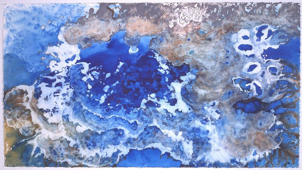 """""""Deep Sea Garden"""" 1994, Deep Sea Garden Series, acrylic on paper, 38 x 68 in (97 x 173 cm)."""