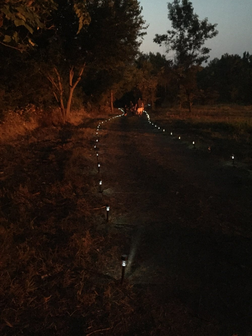 Path Lighting.jpg