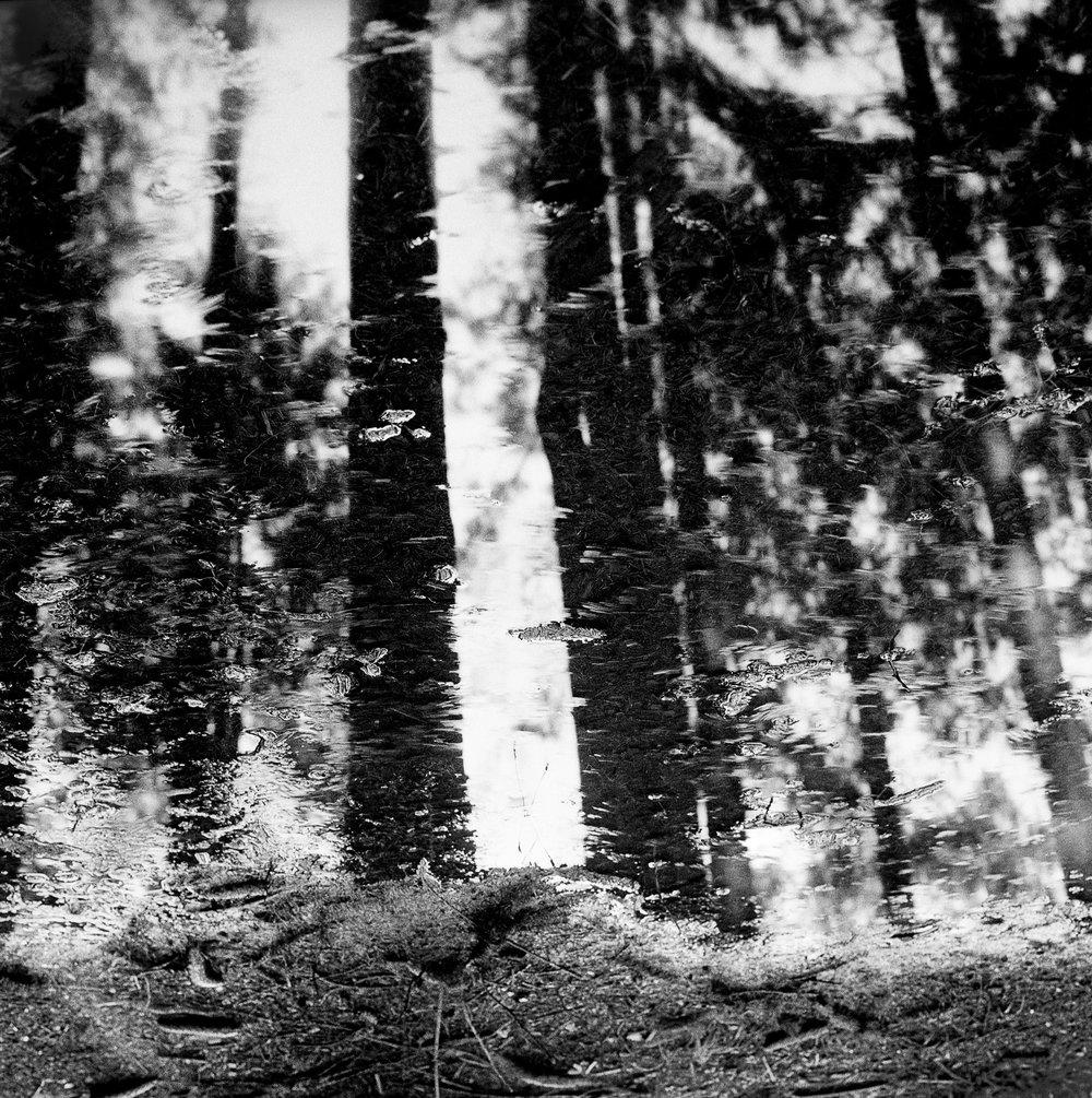 Untitled (14) 2.jpg