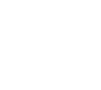 lungs_White.png