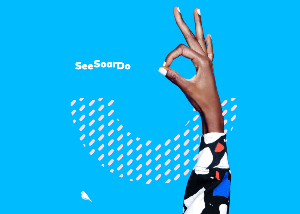 SeeSoarDo Empowering young women to learn STEM through creativity and innovation - a FINCH Initiative, coming soon