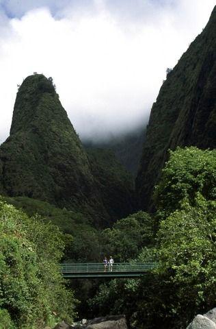 Maui 1.jpg