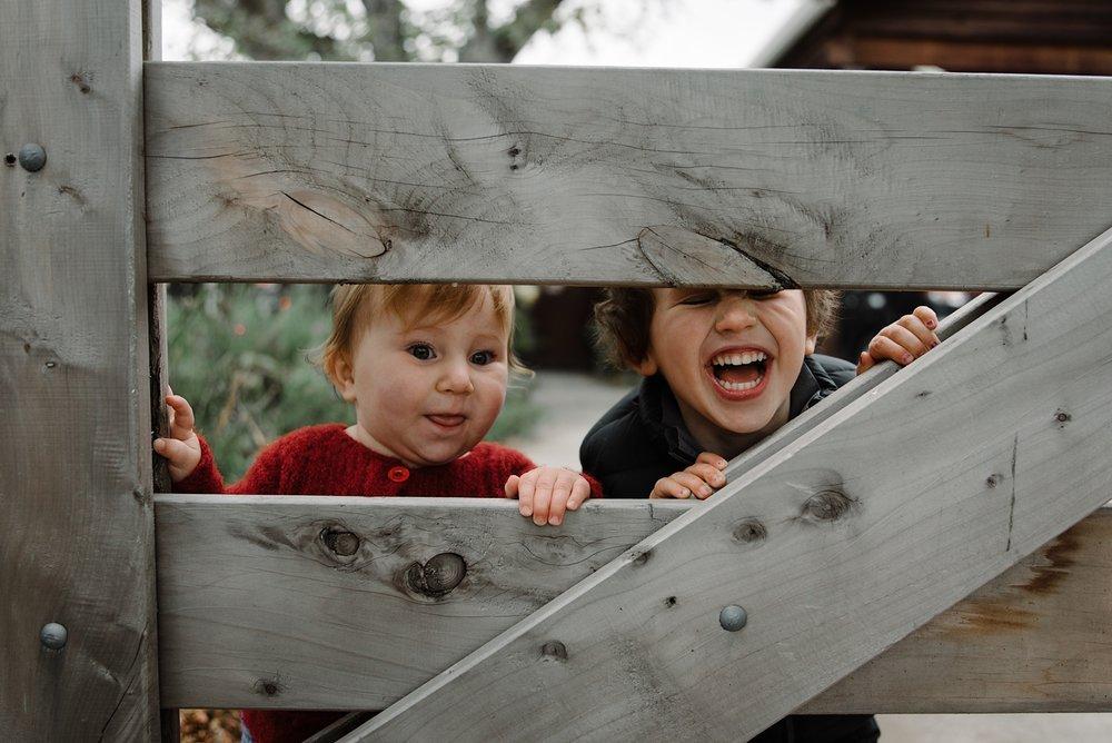 christchurch-family-photographer-3.jpg