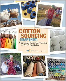 Download Cotton Sourcing Snapshot