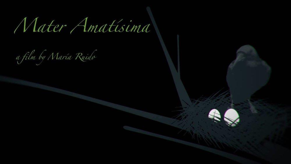 amatissima_poster.jpg