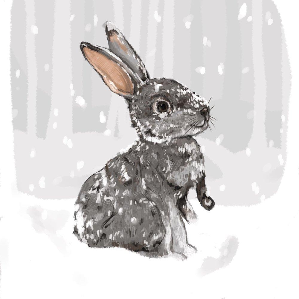BunnyChristmas.jpg
