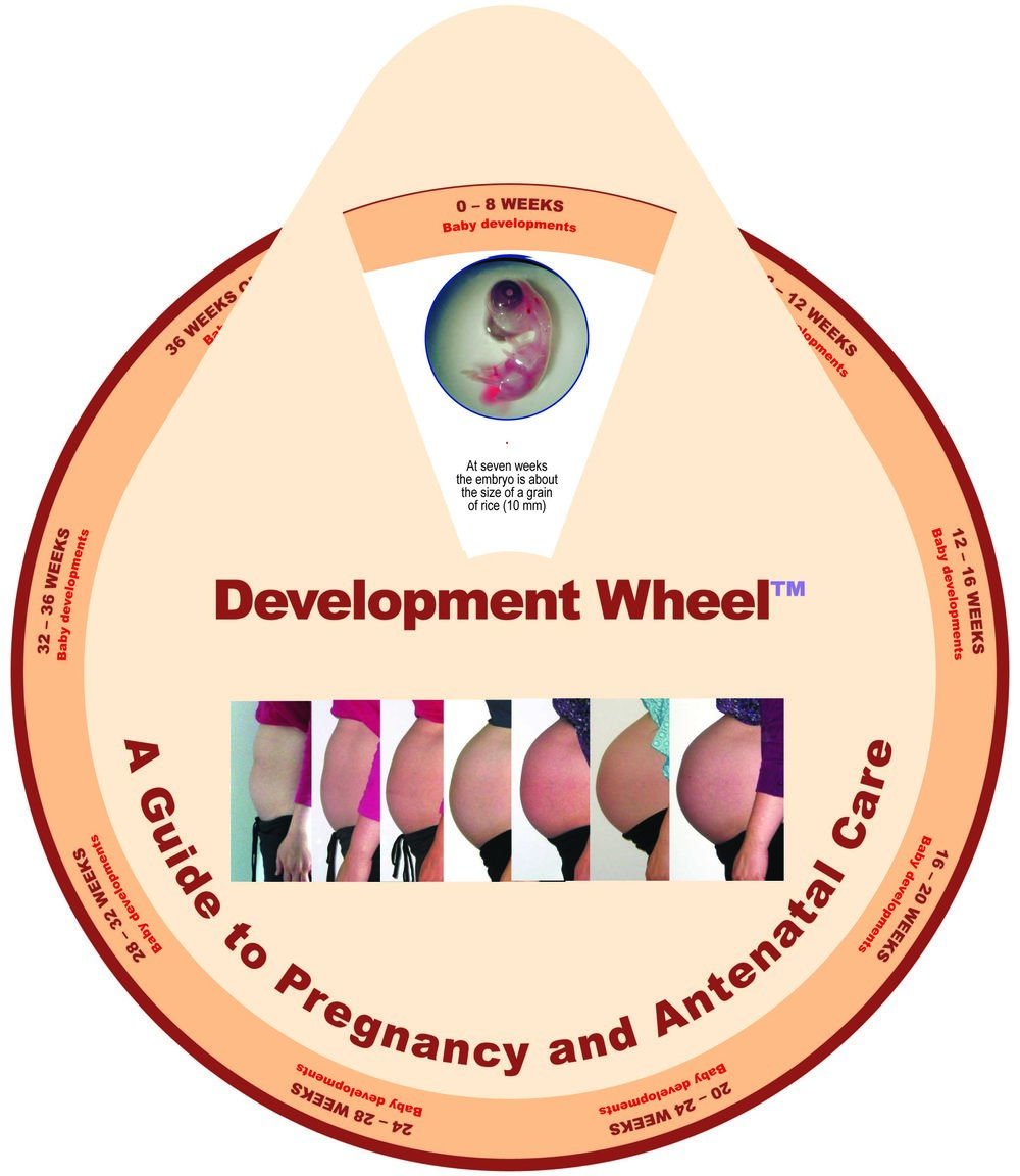 A Guide to pregnancy and antenatal care.jpg