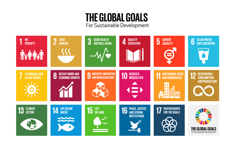 ESD Global goals.png