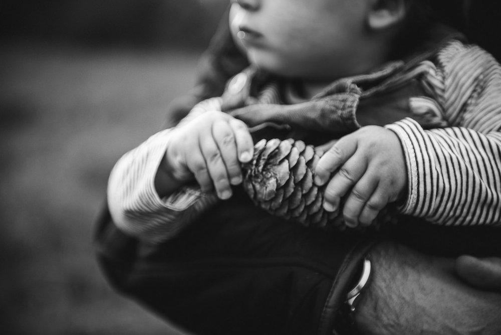 Toddler holding fir cone Cheltenham Chui King Li Photography--3.jpg