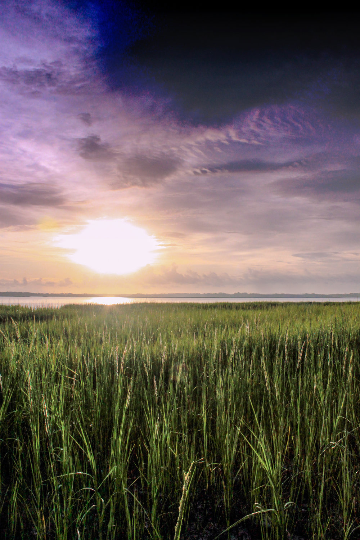 Beaufort Sunrise-3.jpg