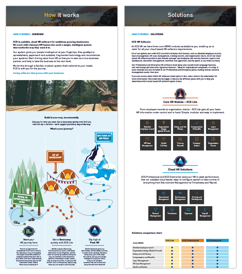 A bespoke illustration uses a mountain journey theme to describe the customer journey and options available. Icons within these key sections describe the solutions on offer.
