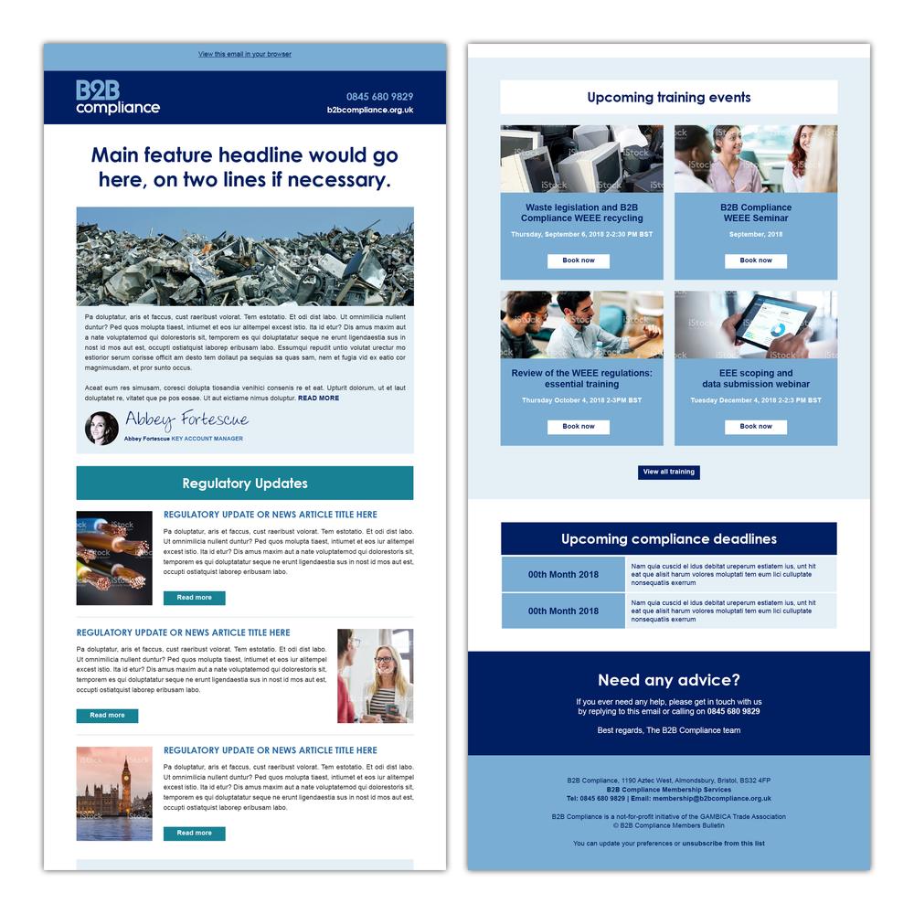 MailChimp email newsletter template design