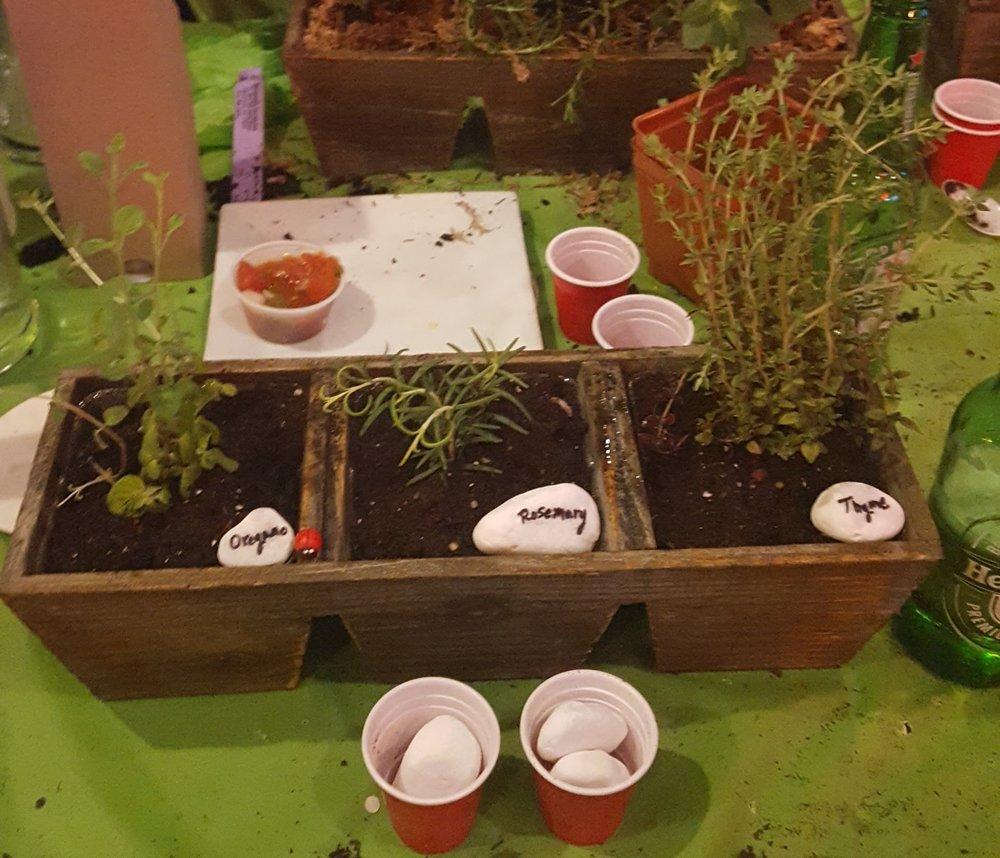 Plant Nite Herb Garden in Three Drawer Planter 1.jpg
