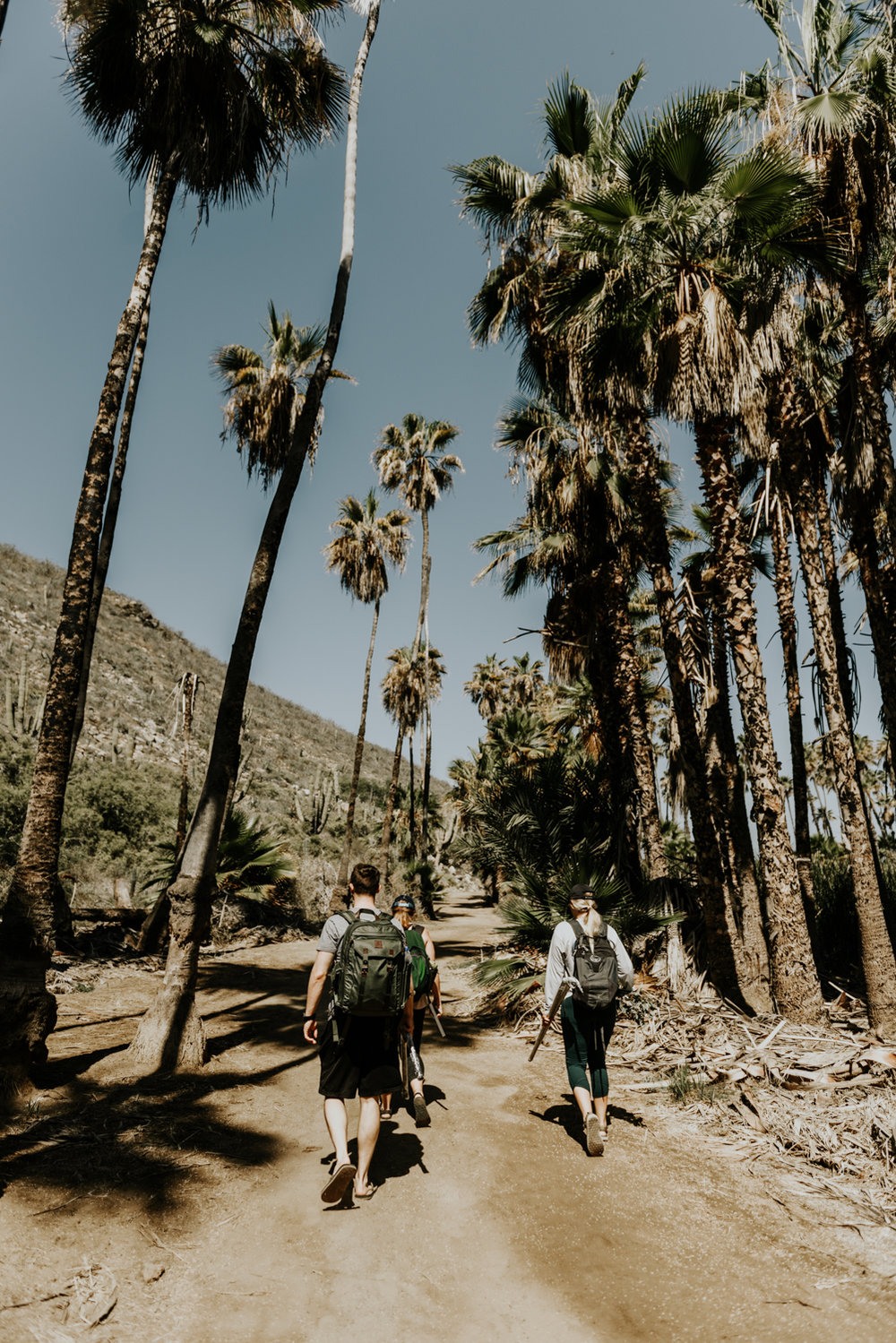 Couple and Guest Hiking to their Ceremony Site in Todos Santos