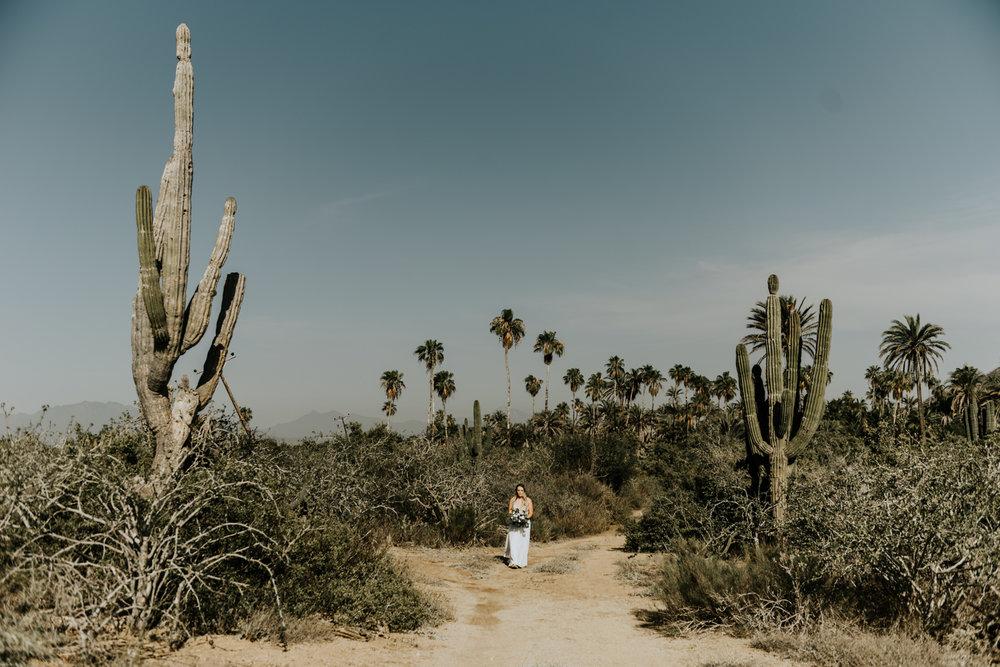 Cacti wedding aisle, Intimate Destination Wedding in Todos Santos, Baja California Sur, Mexico