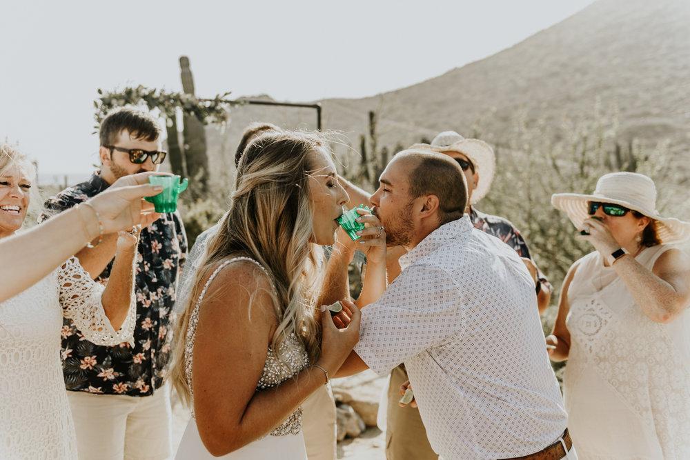 Intimate Wedding Ceremony Toast photos in Todos Santos, Baja California Sur, Mexico