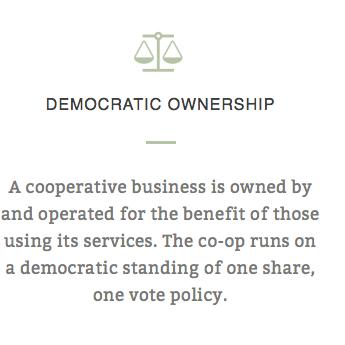 DEMOCRATIC OWNERSHIP