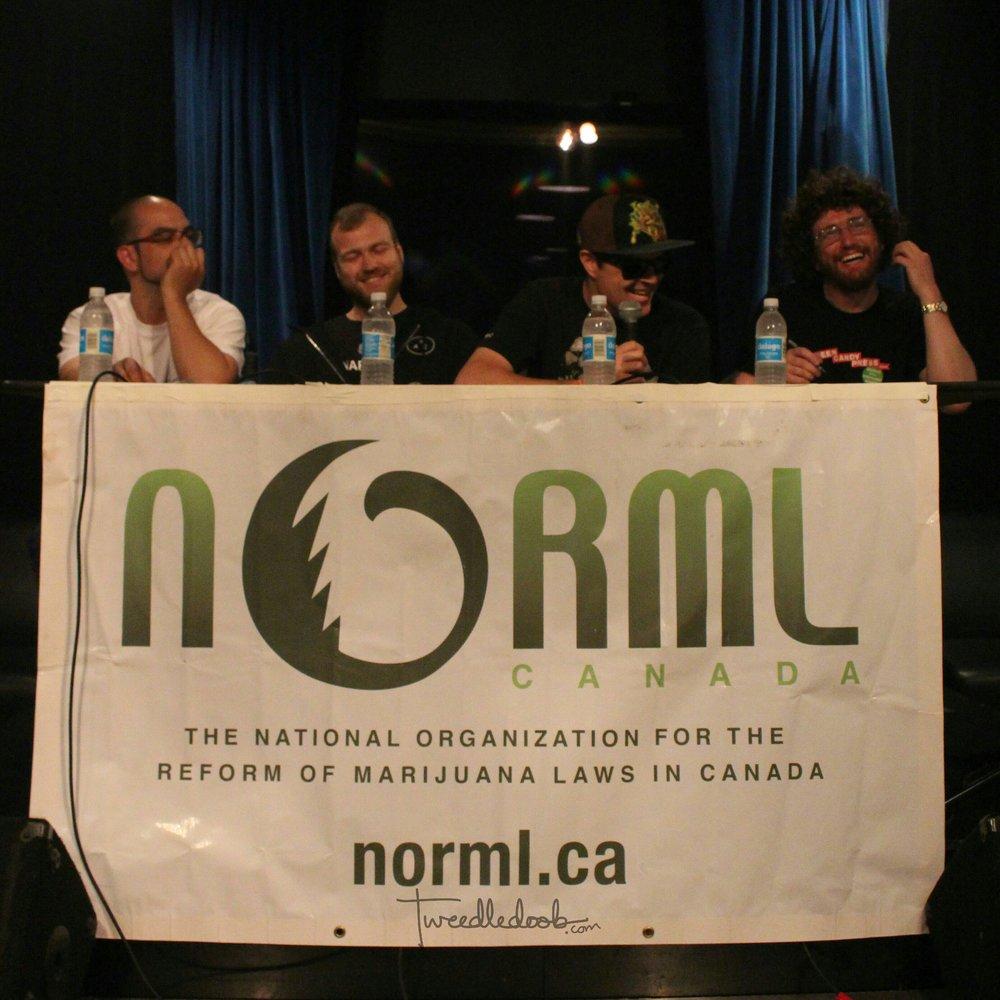 Normlpanel.jpg