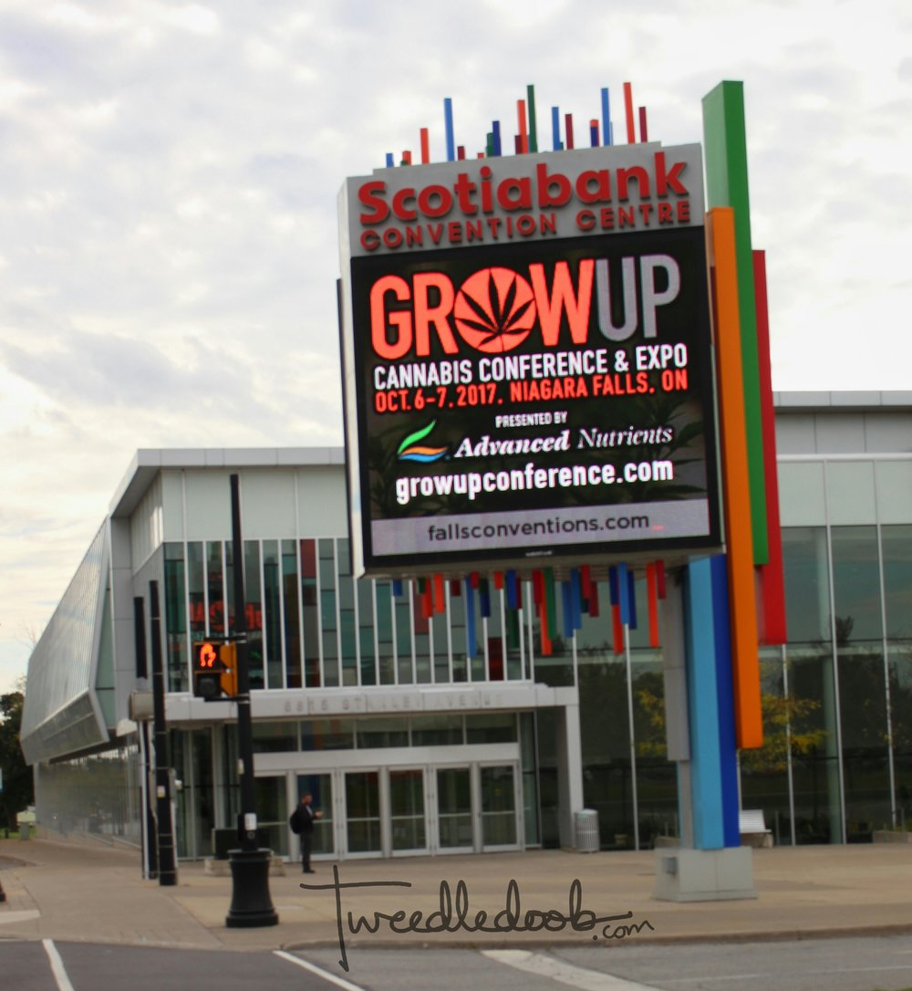 Grow up conference.jpg