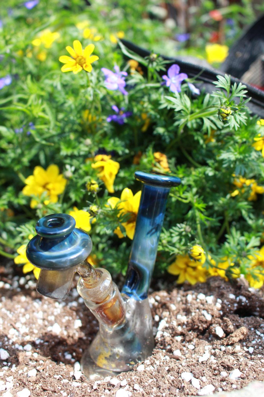 rig in flower.JPG