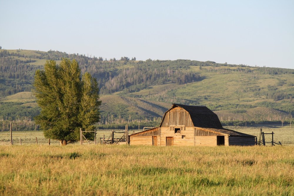 Iconic Barn, Mormon Row