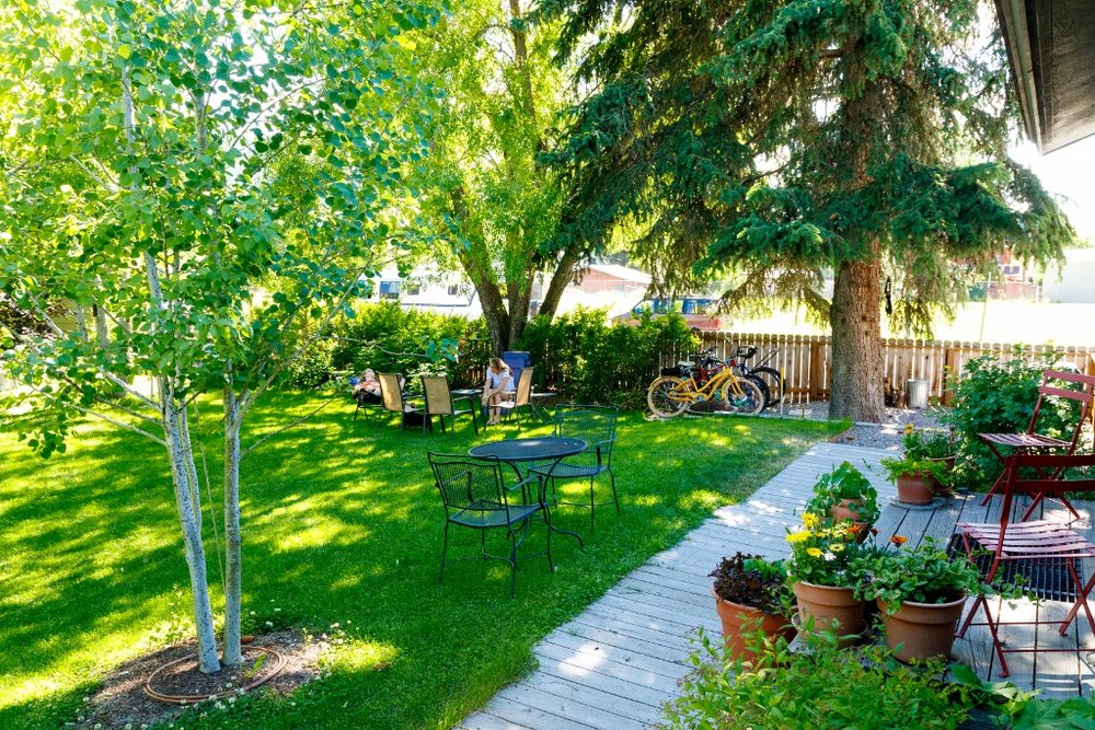Shady and Private Backyard