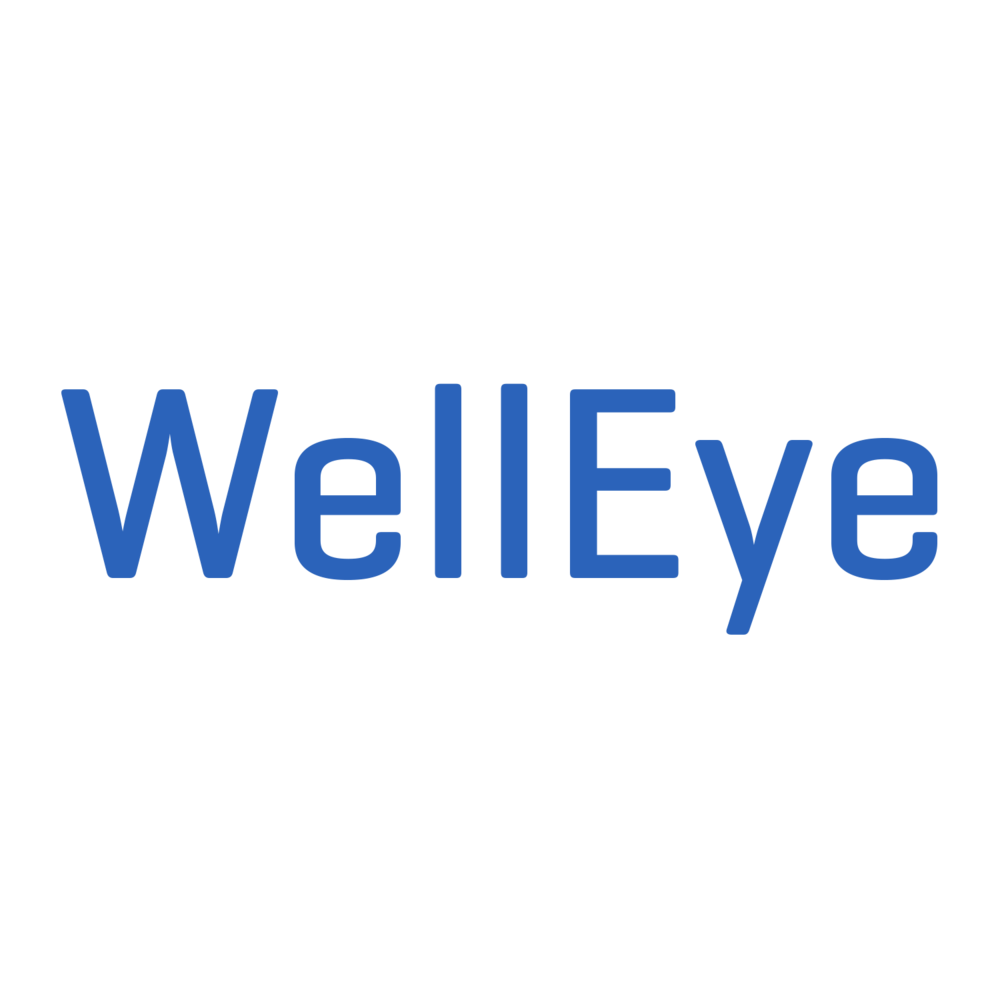 WellEye Logo.png