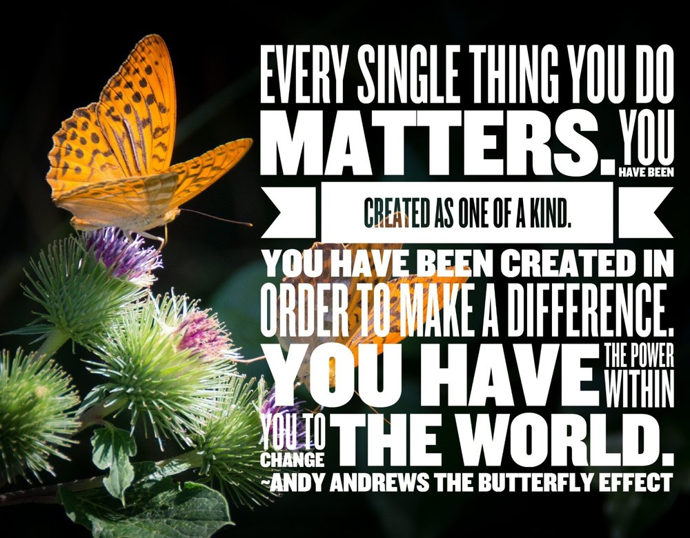 Butterfly Effect Quote