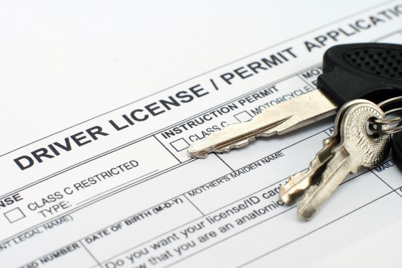 Driver's Permit.jpg
