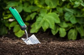 Grave Care - At an additional charge, we will go in to water and weed the planting area of the grave on a routine basis during the hot summer months of June, July, and August.