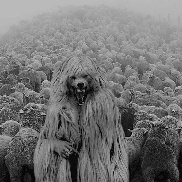 Inwardly, they are ravening wolves…  Props to #darkartistries for the striking image. #thecompanyyoukeep #hypocrites #sheep #wolves #appearances #truth #illusion #awake #herdmentality #standout #theherd #vicious #darkart #darkerdimension #them #notwhattheyseem #destinynowhere