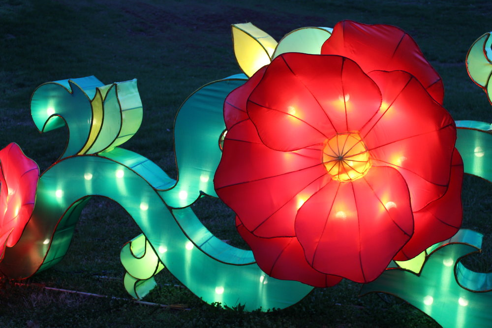 Many of the lanterns represent different aspects of nature in China.
