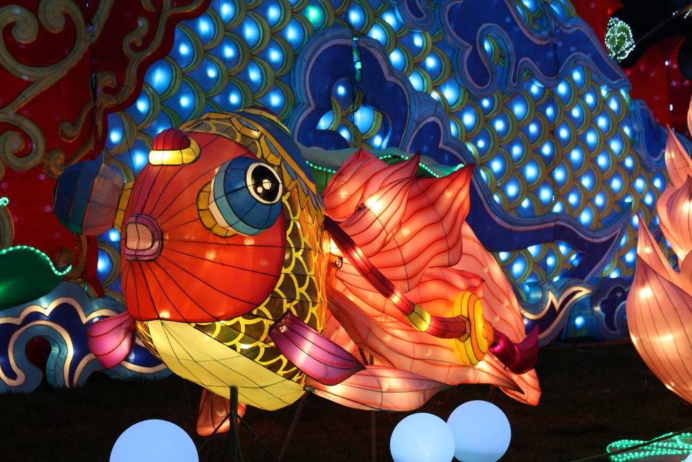 These large carp are a Chinese symbol for living a beautiful life.