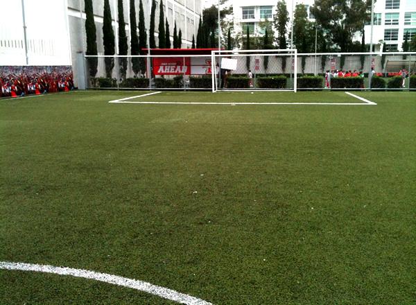 6150e7dd Olimpus 7 - Canchas de Futbol en Ciudad de México y Estado de México