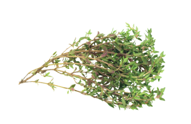 PP-Offerings-Dry Herb Bouquet@2x.png