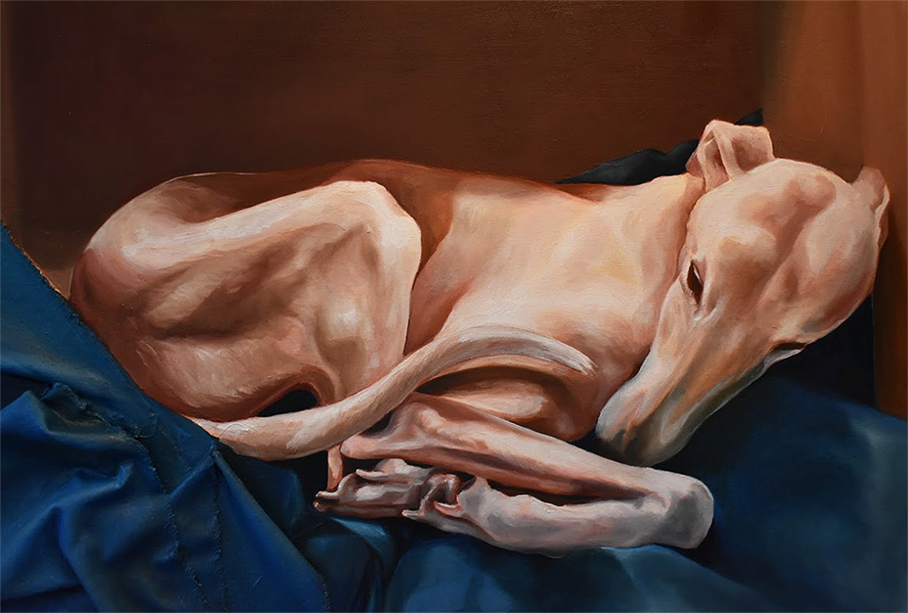Whippet2.png