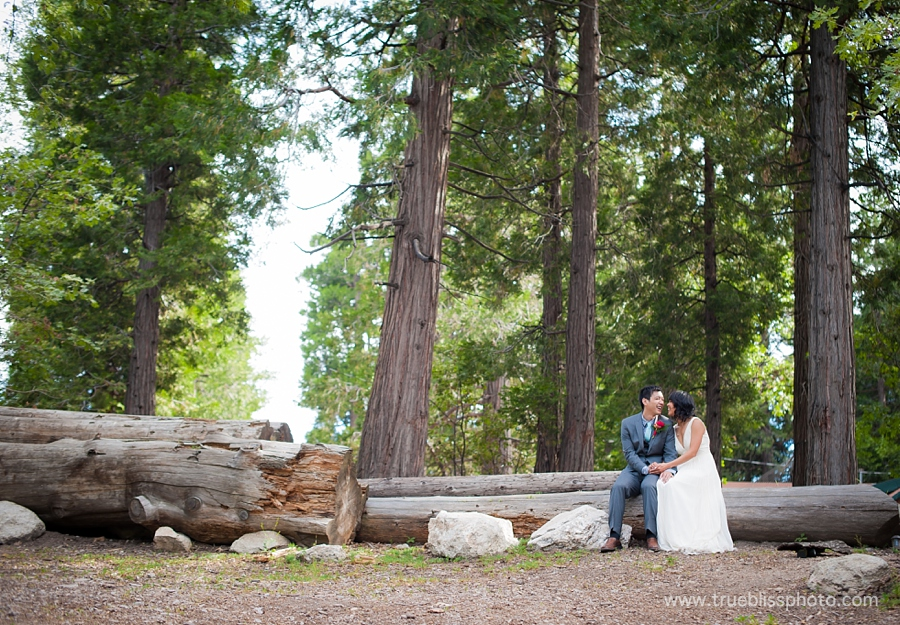 Lake Arrowhead Wedding Photography