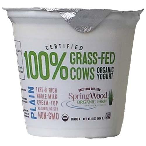 Plain Yogurt Organic 126 oz 45881.jpg