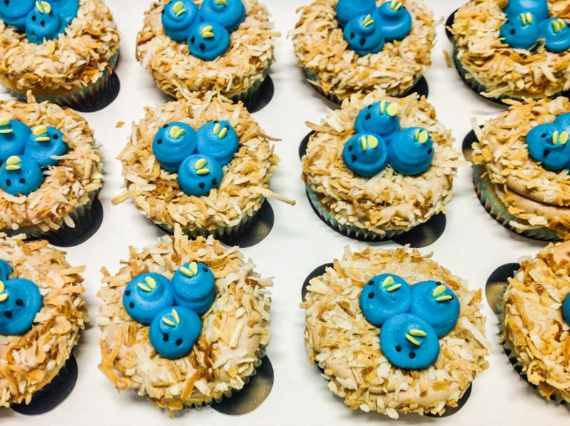 Cupcakes-1.jpg